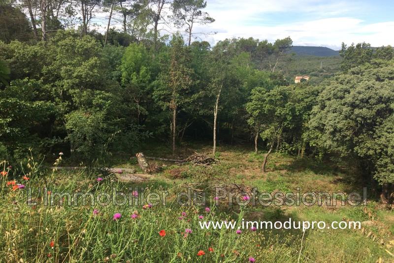 Photo n°3 - Vente terrain Vidauban 83550 - 138 000 €