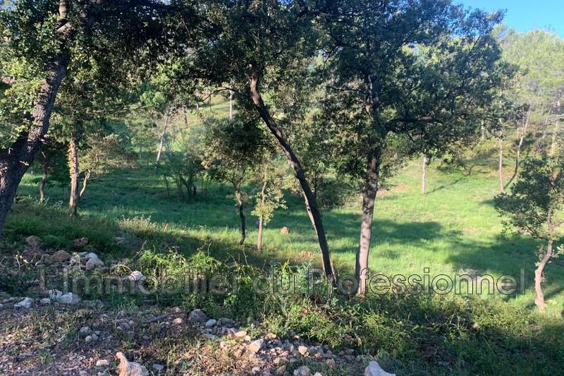 Photo n°5 - Vente terrain Vidauban 83550 - 115 000 €