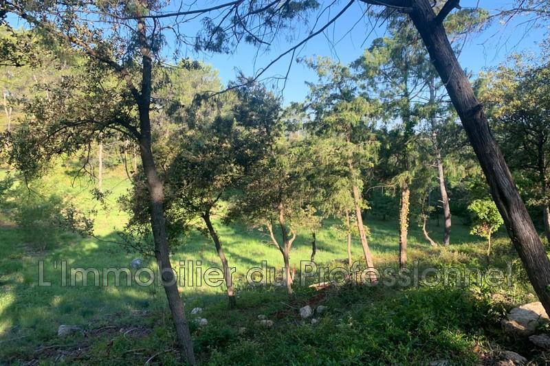 Photo n°7 - Vente terrain Vidauban 83550 - 115 000 €