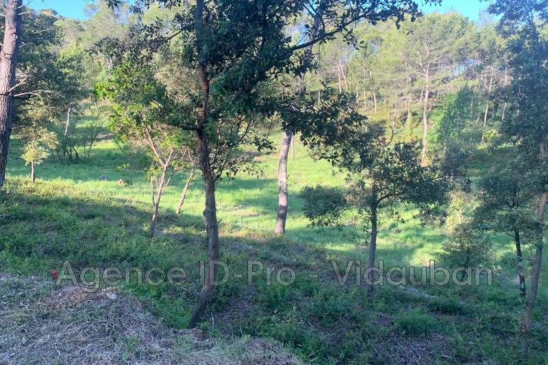 Photo n°4 - Vente terrain Vidauban 83550 - 115 000 €