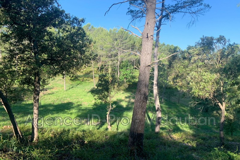 Photo n°2 - Vente terrain Vidauban 83550 - 115 000 €