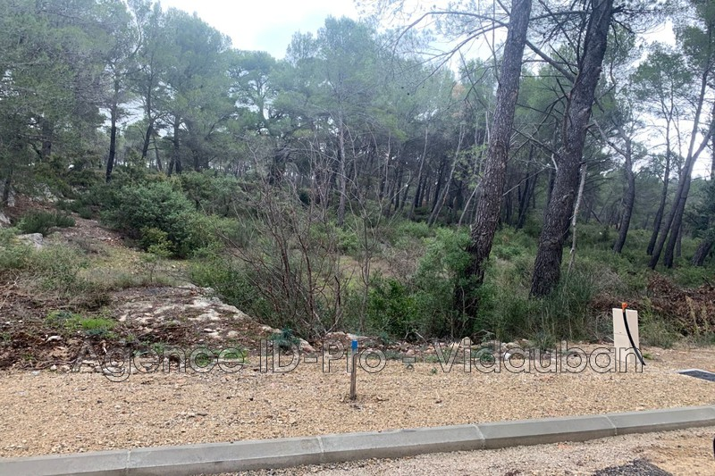 Photo n°2 - Vente terrain Salernes 83690 - 55 000 €