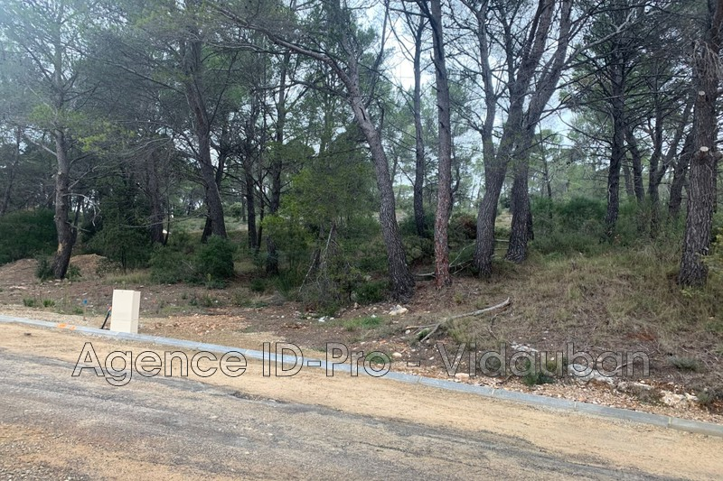 Photo n°4 - Vente terrain Salernes 83690 - 55 000 €