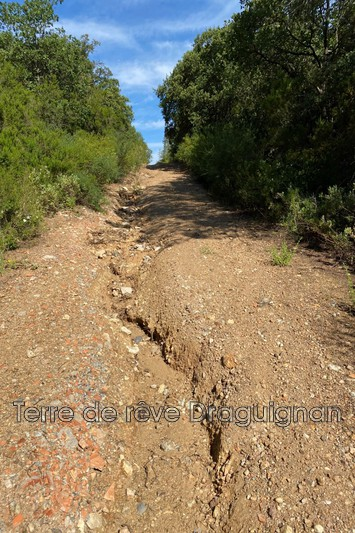 Photo n°6 - Vente terrain Le Muy 83490 - 12 000 €