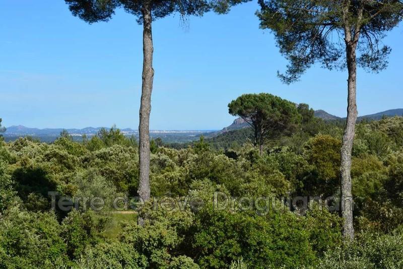 Photo n°11 - Vente Maison villa Trans-en-Provence 83720 - 475 000 €