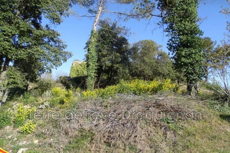 Photo n°3 - Vente terrain Claviers 83830 - 106 000 €