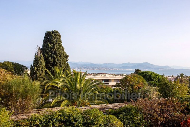 appartement  1 room  Antibes Commerces  24m² -