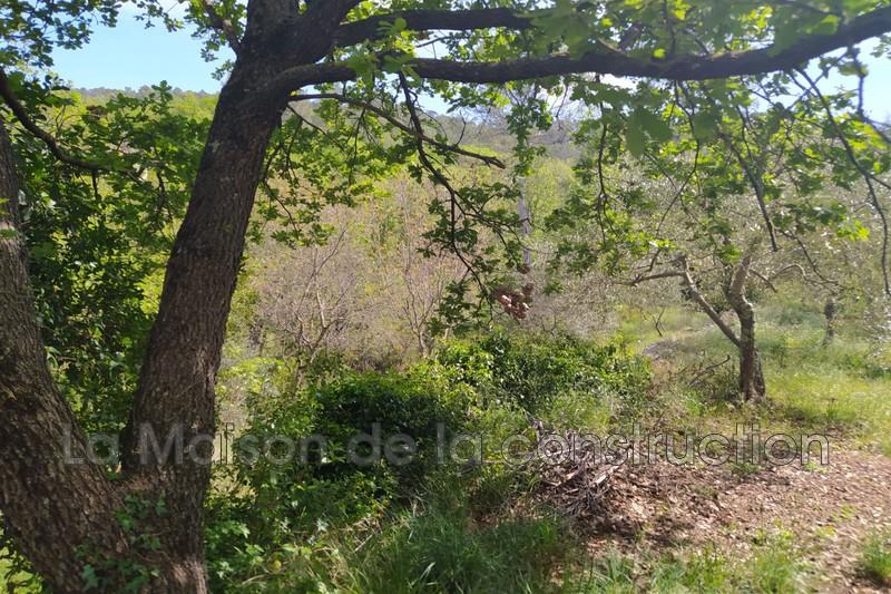 Photo n°2 - Vente terrain Brignoles 83170 - 157 000 €