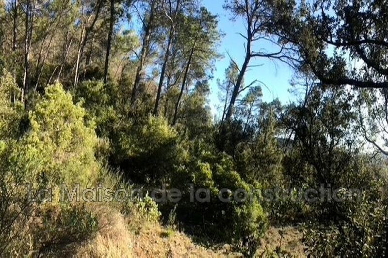 Photo n°2 - Vente terrain Vins-sur-Caramy 83170 - 169 000 €