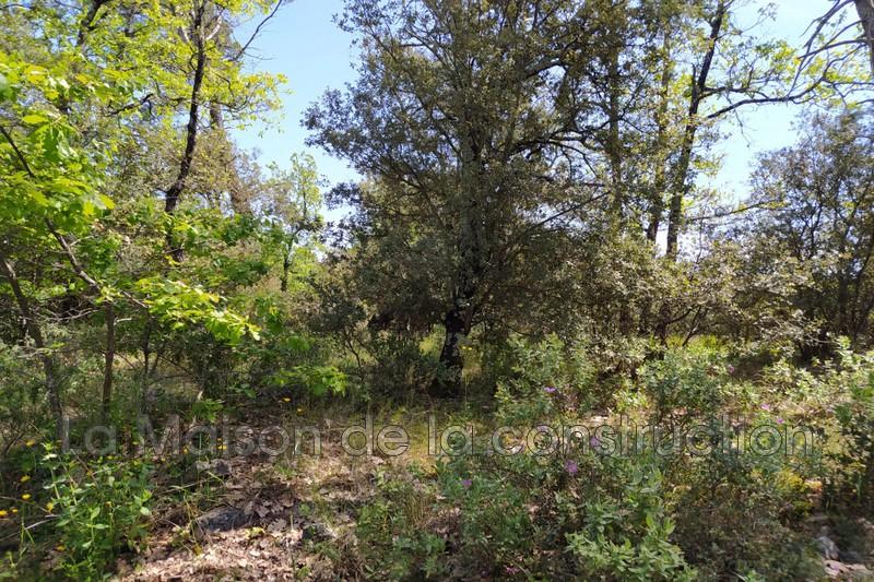 Photo n°1 - Vente terrain Brignoles 83170 - 189 000 €