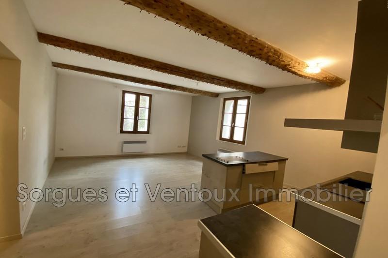 Photo n°1 - Vente appartement L'isle-sur-la-sorgue 84800 - 166 000 €