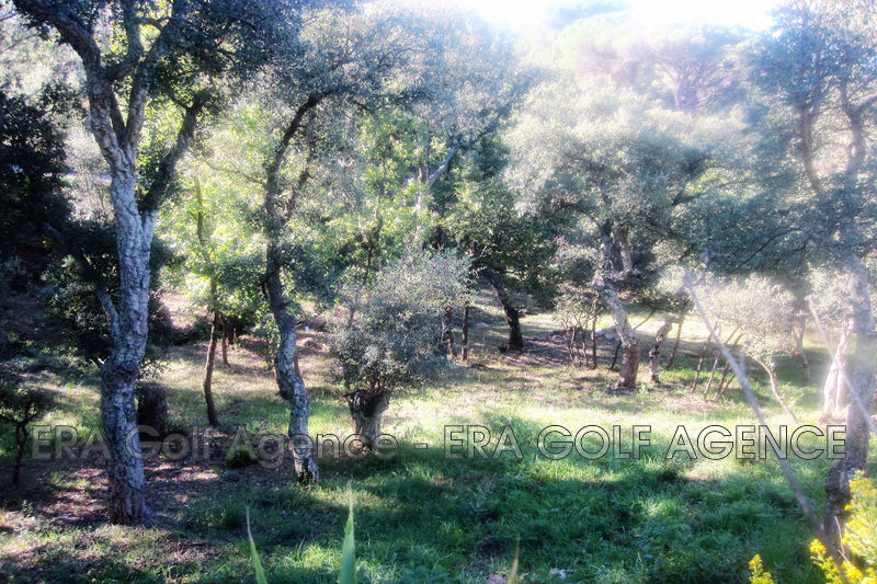 Photo Terrain constructible Vidauban   achat terrain constructible   1281 m²