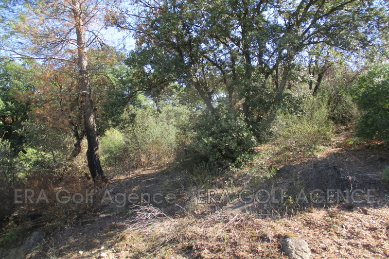 Photo Terrain constructible Vidauban Centre ville,   achat terrain constructible   1613 m²