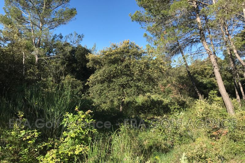 Photo Terrain Le Cannet-des-Maures   achat terrain   61425m²