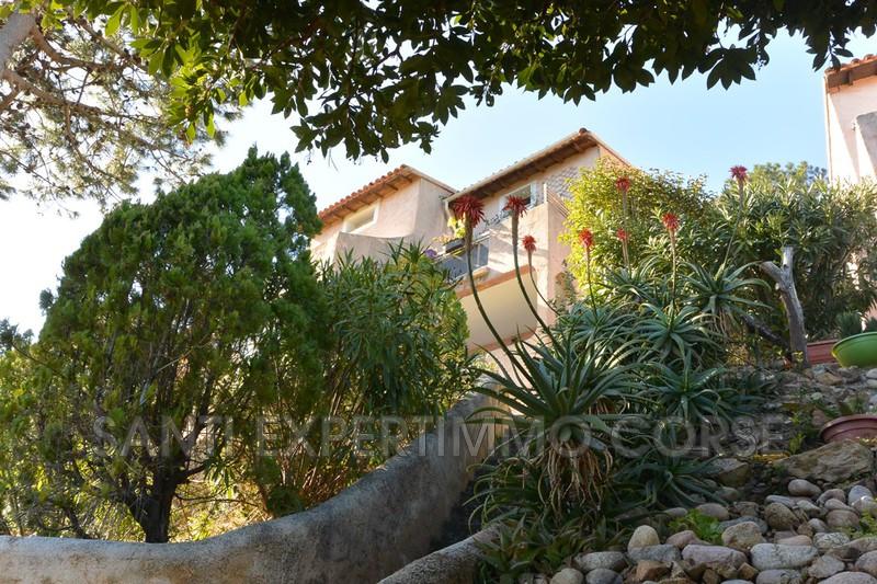 Photo Appartement Tarco conca  Location saisonnière appartement  1 pièce   26m²