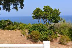 Photo Villa Sari-Solenzara  Location saisonnière villa  8 chambres   147m²