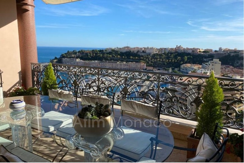 Apartment Monaco  Rentals apartment  6 rooms   258m²