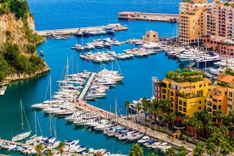 Monaco  Occupational    78m²