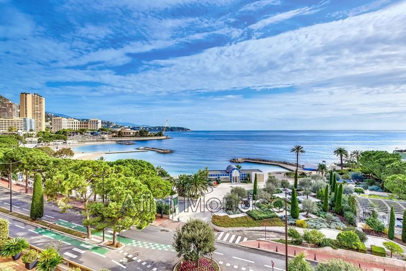 Penthouse Monaco   to buy penthouse  8 rooms