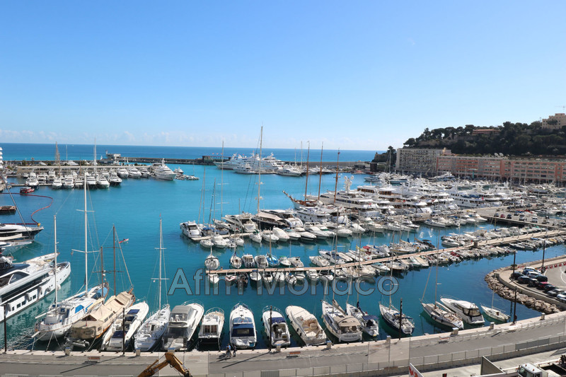 Apartment Monaco   to buy apartment  3 rooms   115 m²