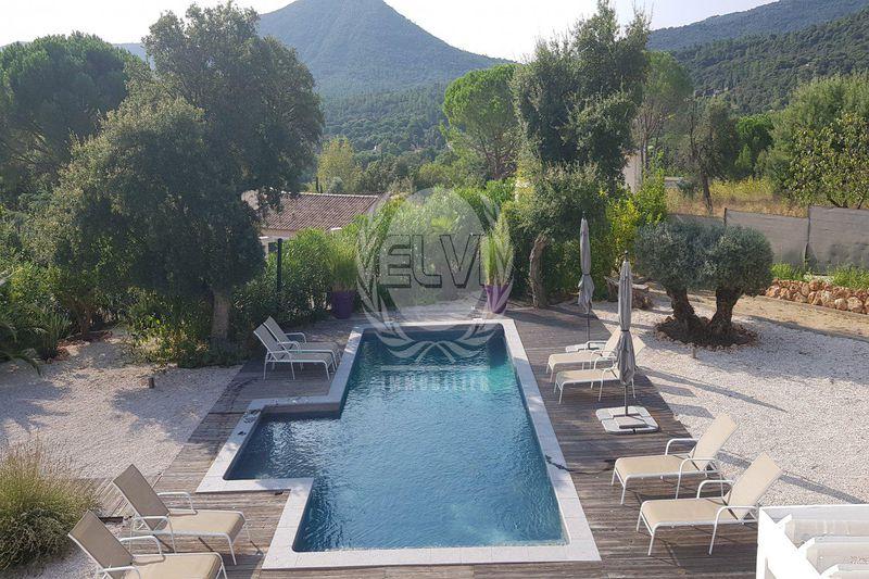 Photo House Le Plan-de-la-Tour   to buy house  5 bedrooms   225m²