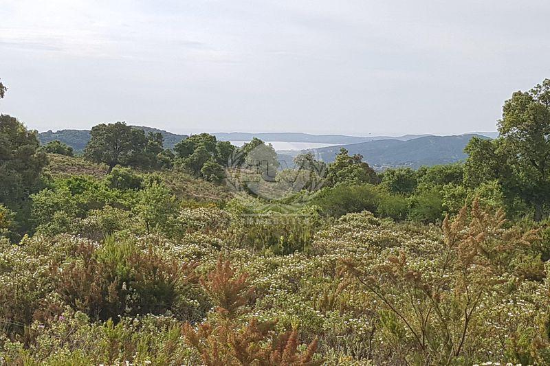 Terrain Sainte-Maxime   achat terrain   14000m²