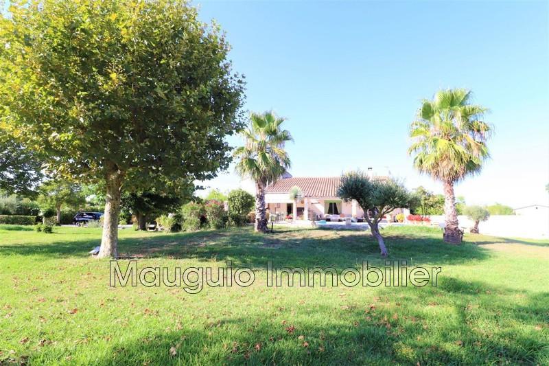 Photo Maison Mauguio   achat maison  4 chambres   180m²