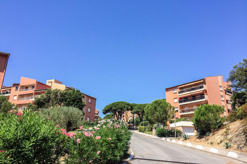 Photo Appartement Sainte-Maxime Virgiles,   achat appartement  2 pièces   34 m²