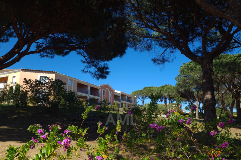 Photo Apartment Sainte-Maxime   to buy apartment  3 rooms   60 m²
